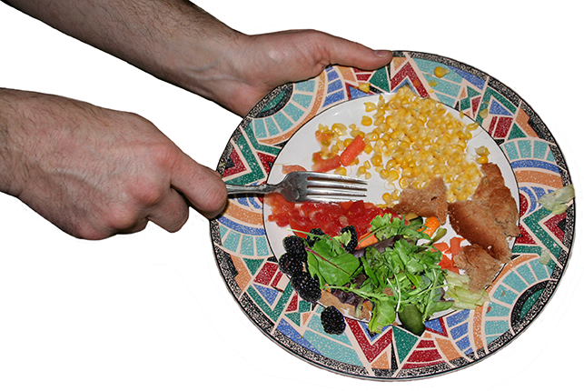 foodWastePlate
