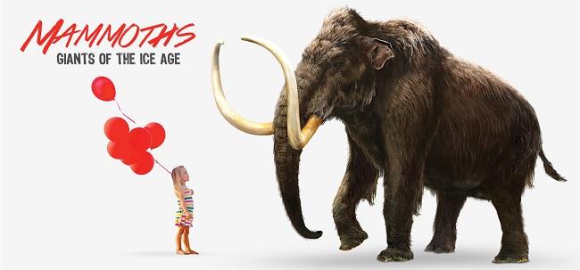 Mammoth_Public_Website_Images3
