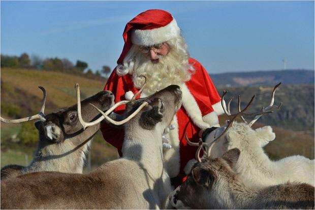 بابا نوئل در حال صحبت با گوزنها در شهر نیدرهاوزن در آلمان
