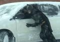 batman-snow-montreal