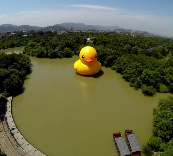 Rubber Duck Arrives In Hangzhou