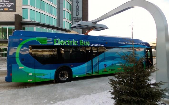 elecc bus