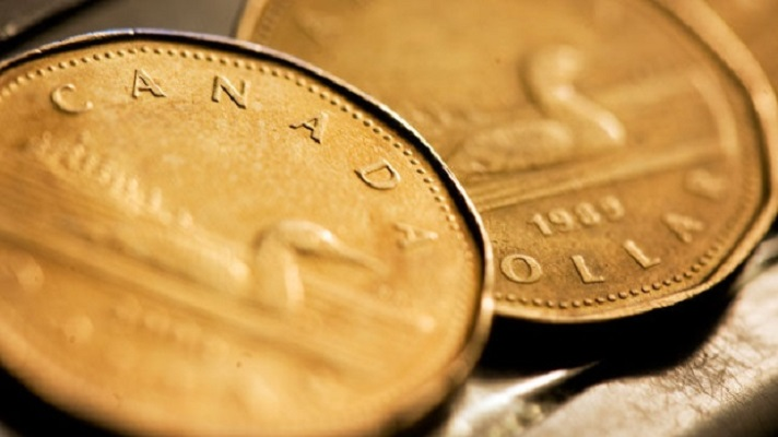 loonie-canadian-coins-money