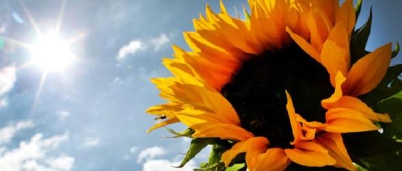 آخر هفته گرم و آفتابی در انتظار ونکووری ها