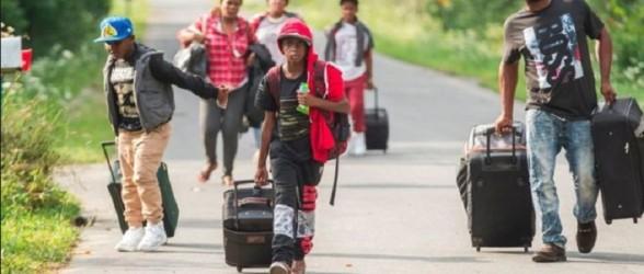 شمار متقاضیان پناهندگی کانادا به بالاترین میزان در سه دهه اخیر رسید