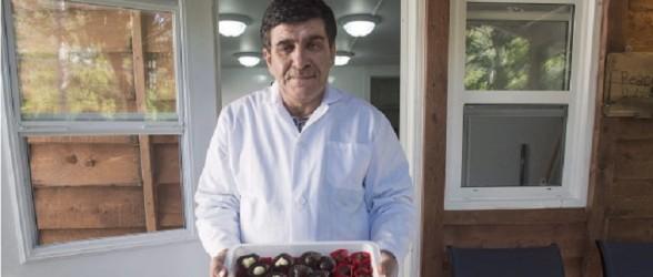پناهنده موفق سوری 50 پناهنده دیگر را در شکلات سازی اش استخدام میکند